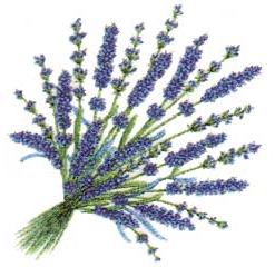 Photo of  Lavender garland